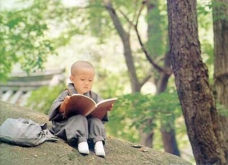 从哪本书读起